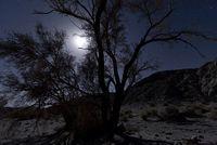 NIghtime Desert